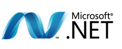 Microsoft .NET Framework Development India Custom Software